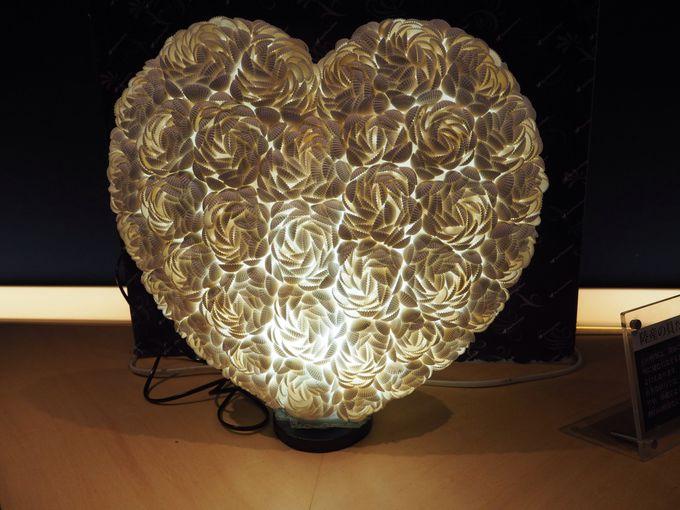 ロマンチックな貝の博物館「シェルミュージアム」