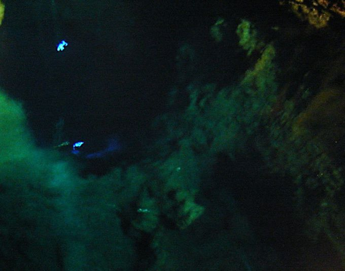 世界有数の透明度を誇る地底湖