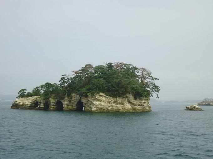 松島の景勝を作っている不思議な形の島々