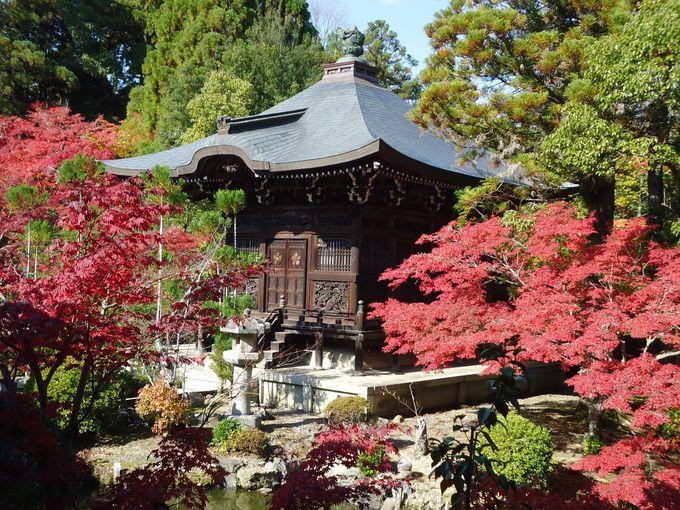 仏像ファンも満足の清凉寺は、庭園の紅葉が美しい
