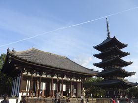 ファンクラブがある人気の仏像「阿修羅」に会える!奈良興福寺