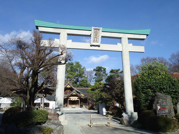神奈川県秦野市にある小さな出雲大社