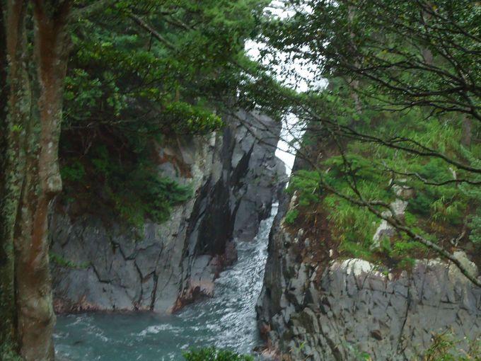 神割崎の荒波を一望