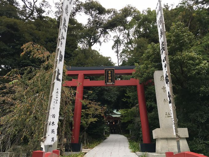 最も古い信仰の形を残す来宮神社