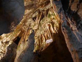 鍾乳石が美しい飛騨大鍾乳洞・高山は太古の昔海だった!?