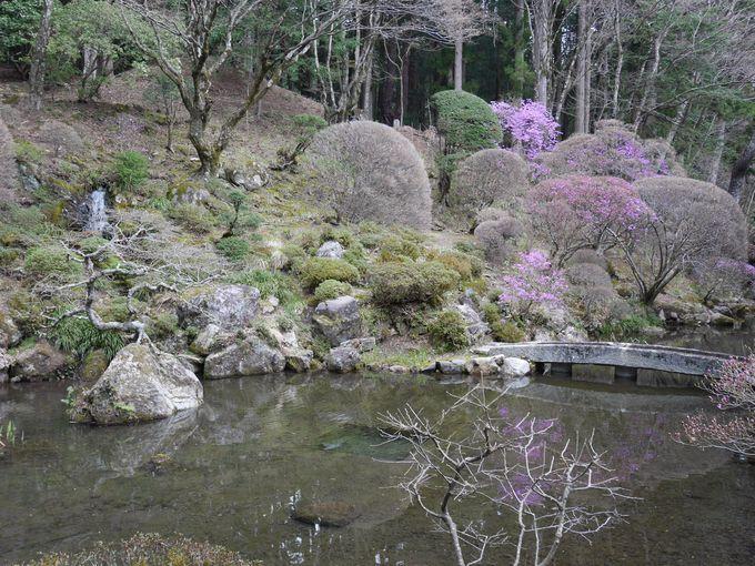 美しい立ち姿の三重塔・名勝の庭園もお見逃しなく