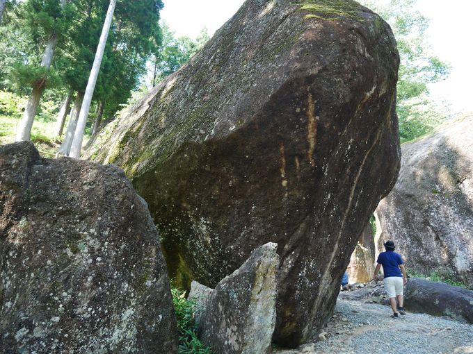 異空間に入り込んだかのような「線刻石のある巨石群」