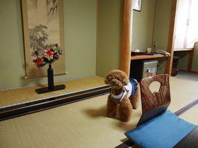 ペットと泊まれる温泉宿おすすめ10選 ペットも飼い主さんもリラックス!