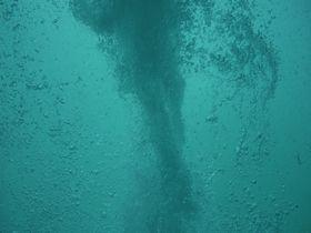 海の中で竜巻!?鳴門の渦潮を中から見られる「アクアエディ」