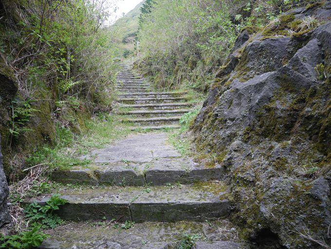 摩崖仏25菩薩と鎌倉時代の箱根越えの道「湯坂路」