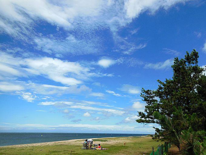 国の名勝で泳ぐ!「慶野松原海水浴場」
