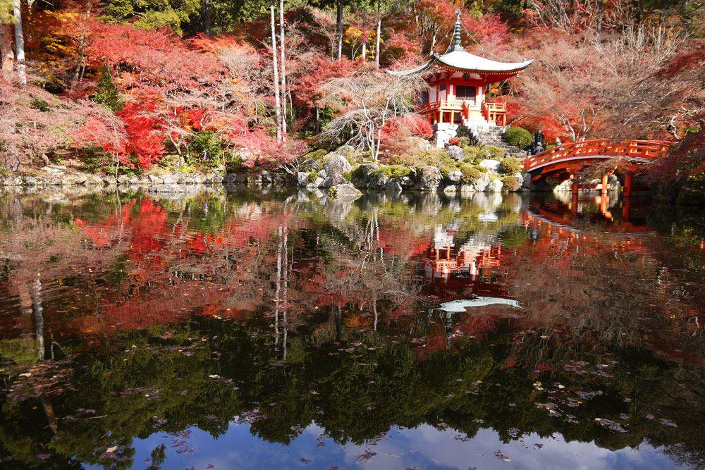 春以外にも醍醐寺を訪れる