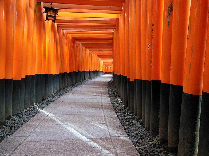 伏見稲荷大社散策のモデルコースは定番の千本鳥居!