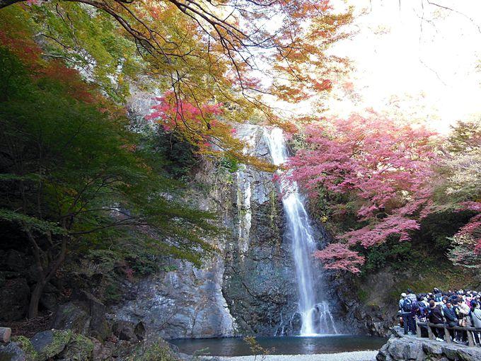 大滝も紅葉も必勝祈願も!自然豊かな癒しスポット「箕面」