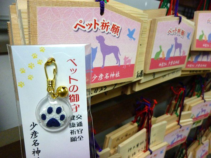 ペットと健康祈願!くすりの町、大阪・道修町と少彦名神社!