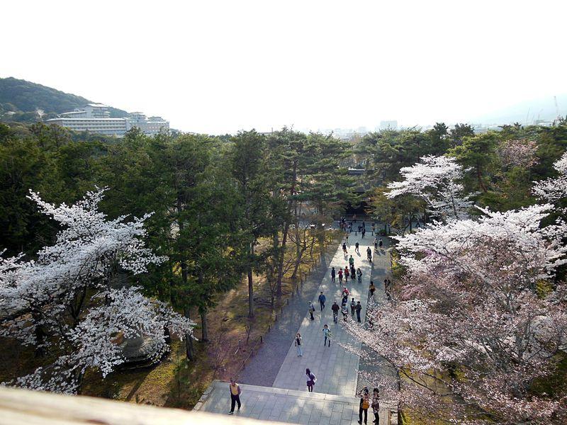 南禅寺三門に上る!楼上から見下ろす京の桜はやはり絶景!