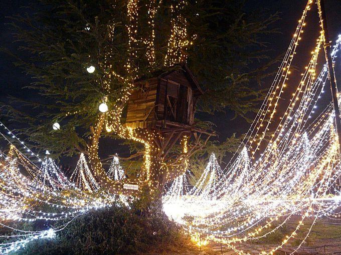 ひらパーのイルミネーション「光の遊園地」