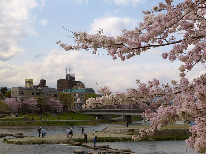 京都で川といえば鴨川