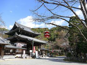 幽寂な境内の今熊野観音寺!京都のお寺で静かに過ごす贅沢