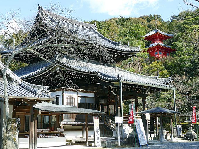第十五番札所、今熊野観音寺(いまくまのかんのんじ)