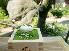 産寧坂で抹茶ティラミス!抹茶館の京都2店目は庭園アリの穴場