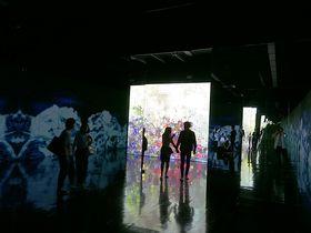 チームラボが姫路に!暗闇のやさしさを体感する展覧会