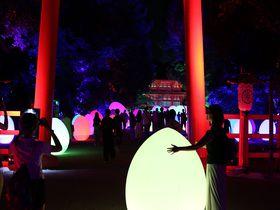チームラボによる京都の光の祭!2019年も優しく光に包まれる下鴨神社