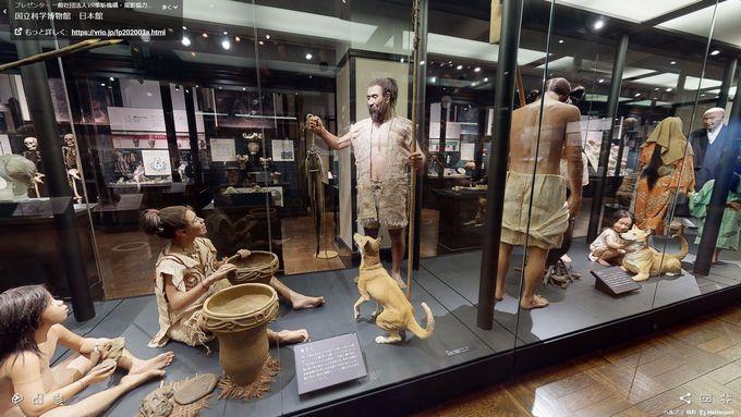 かはくVRで巡る国立科学博物館日本館