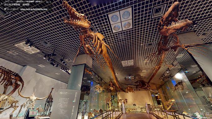 かはくVRで巡る国立科学博物館地球館