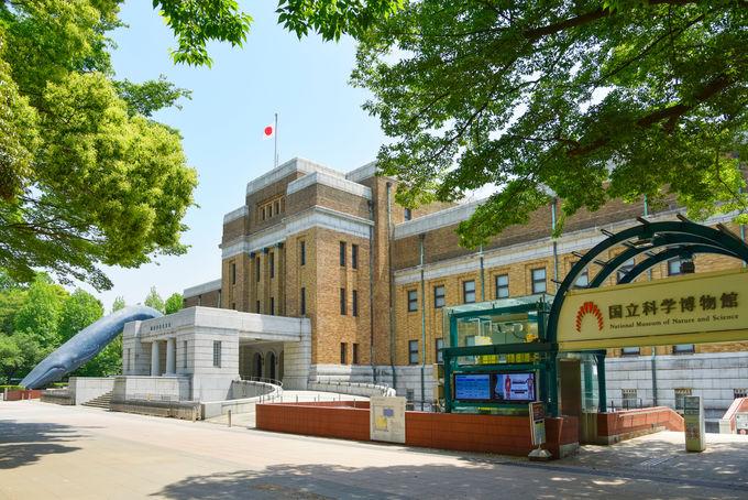 Vr 博物館 国立 科学