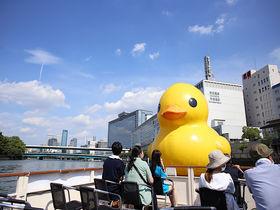 巨大アヒルちゃんと大阪でプカプカ!ラバー・ダックは漂えど沈まず
