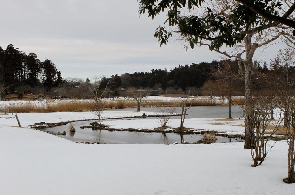おすすめの穴場「四季の原」「月池」「螢谷遊歩道」