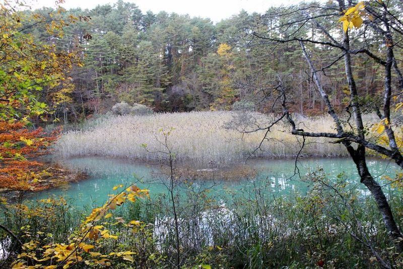 変化にとんだ四季が魅力!裏磐梯〜五色沼・桧原湖を満喫