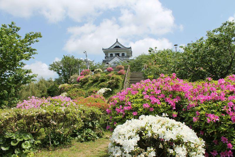 季節の花々が美しい「城山公園」