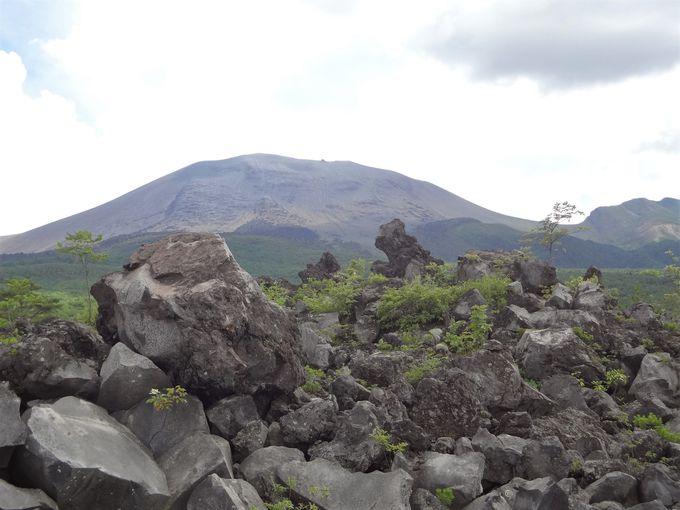 無数の溶岩と浅間山が織りなす鮮烈なコントラスト