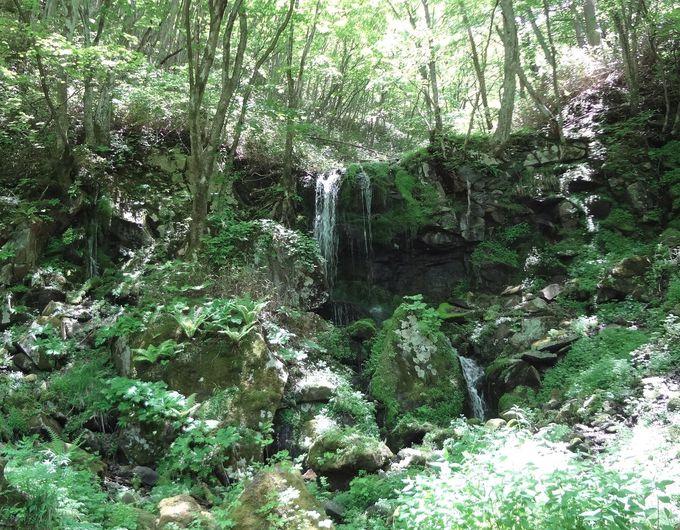 『雪山讃歌』が流れるメロディーラインで「たまだれの滝」へ