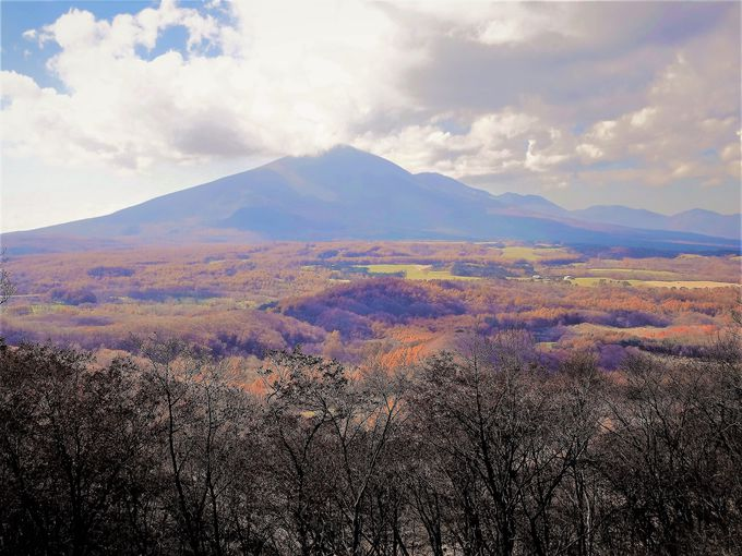 森が波打っているよう!「二度上峠の頂」から望む紅葉