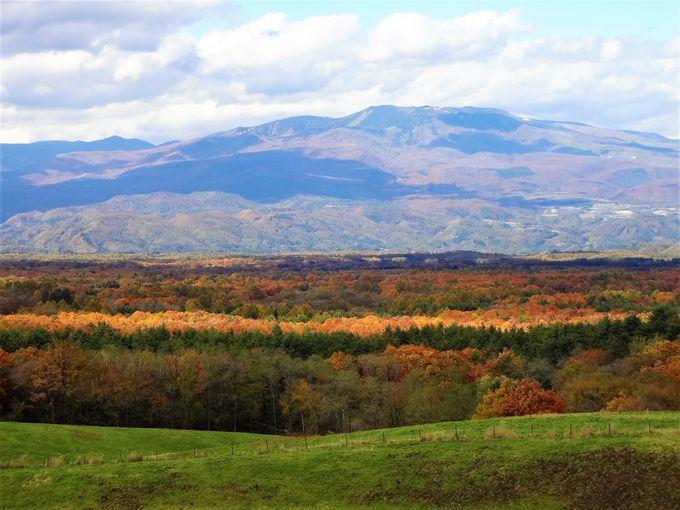 浅間牧場の丘の上から望む壮大な紅葉