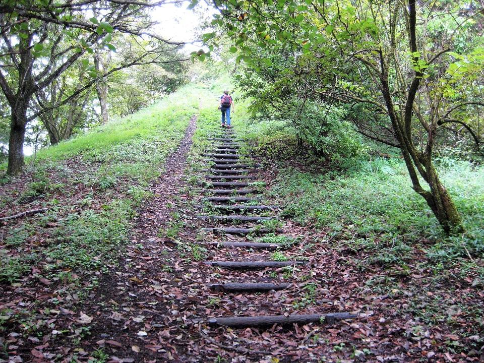 最後に緩やかな木段を登れば山頂に到着