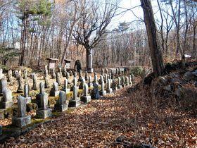 群馬北軽井沢「桜岩地蔵尊」県道沿いに並ぶ100体の観音様