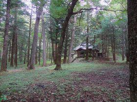 群馬北軽井沢「狩宿諏訪神社」静寂な森で感じる神秘のパワー