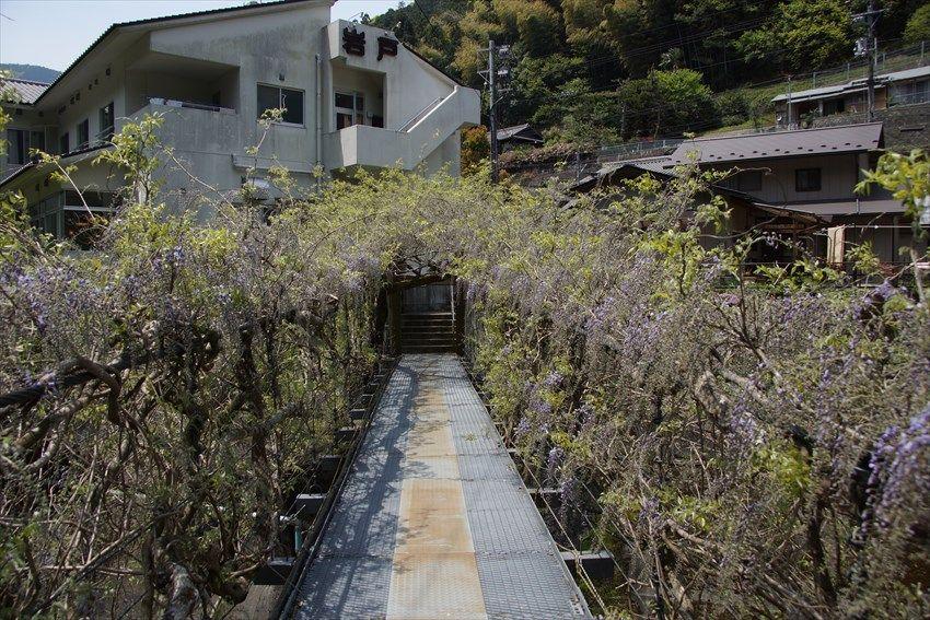 剣山へ向かう道中の貞光川沿いの魅力スポット