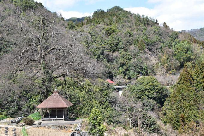 独特の山間集落風景を楽しむ