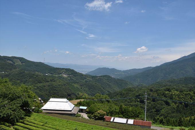 世界農業遺産に認定されている傾斜地農業が行われる地