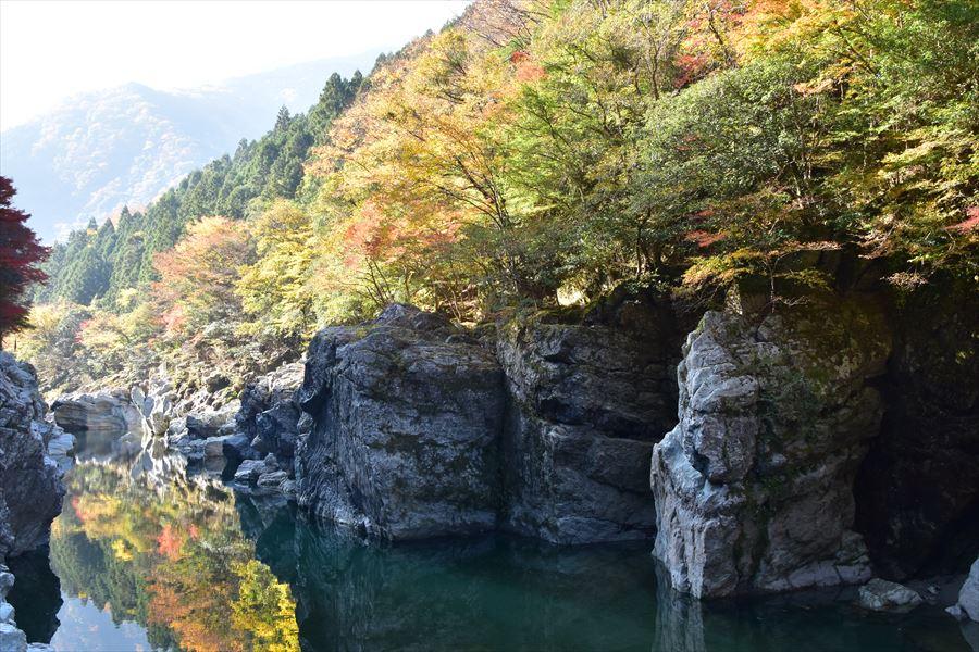 渓谷の紅葉を満喫 日本三大秘境の一つ徳島県の祖谷川を遡る