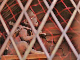 猿が守る鬼門!?京都で猿の寺・神社をめぐってみよう!