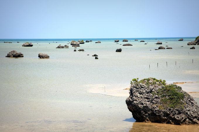 独特の景観は大津波が運んだ無数の大岩によるもの