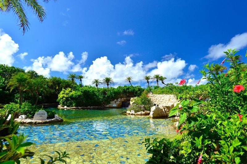 ワイルド!宮古島「シギラ黄金温泉」は緑と花々に囲まれた絶景温泉