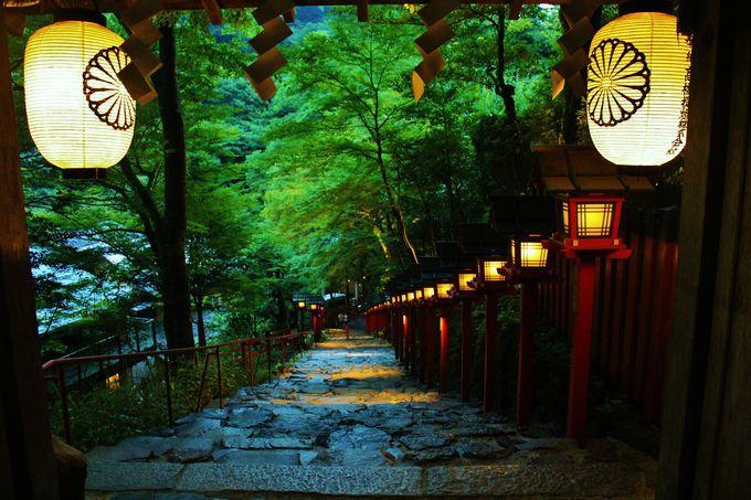 これぞ京都の夕涼み!貴船神社「七夕笹飾りライトアップ」