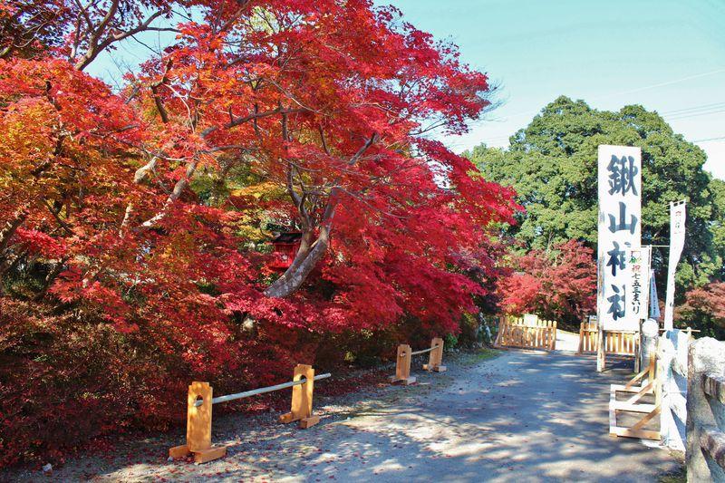 内緒だよっ!京都亀岡「鍬山神社」が混雑知らずの紅葉名所ということは。